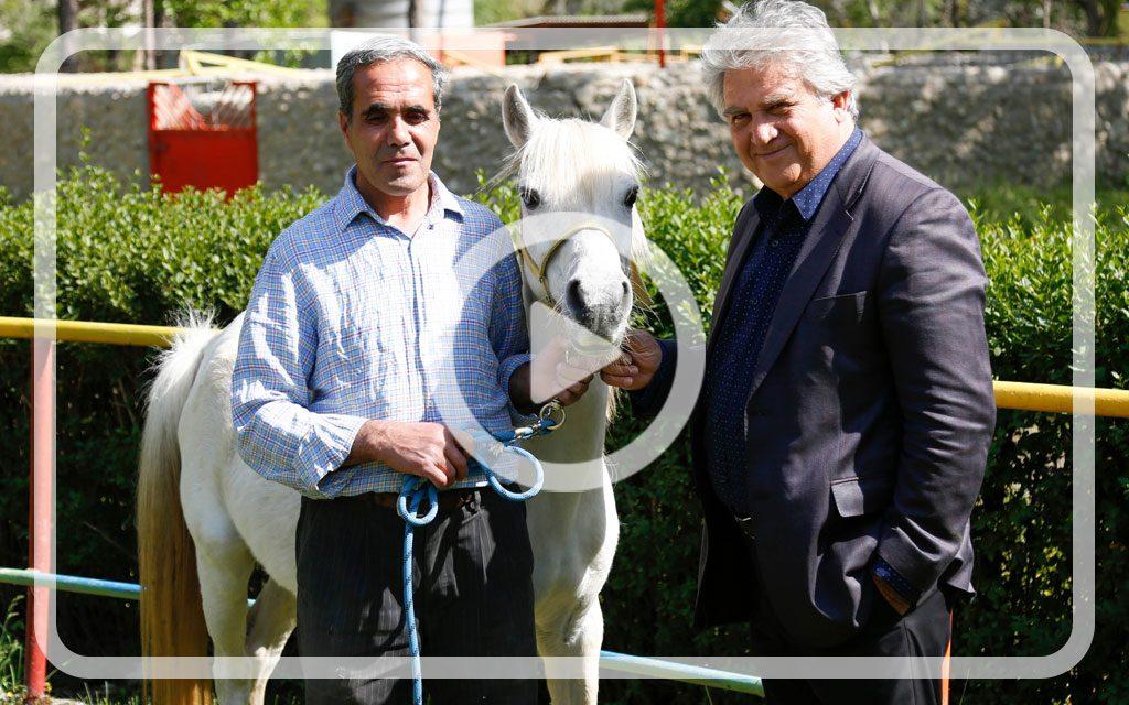 ویدپو توضیحات باشگاه فیروزآباد