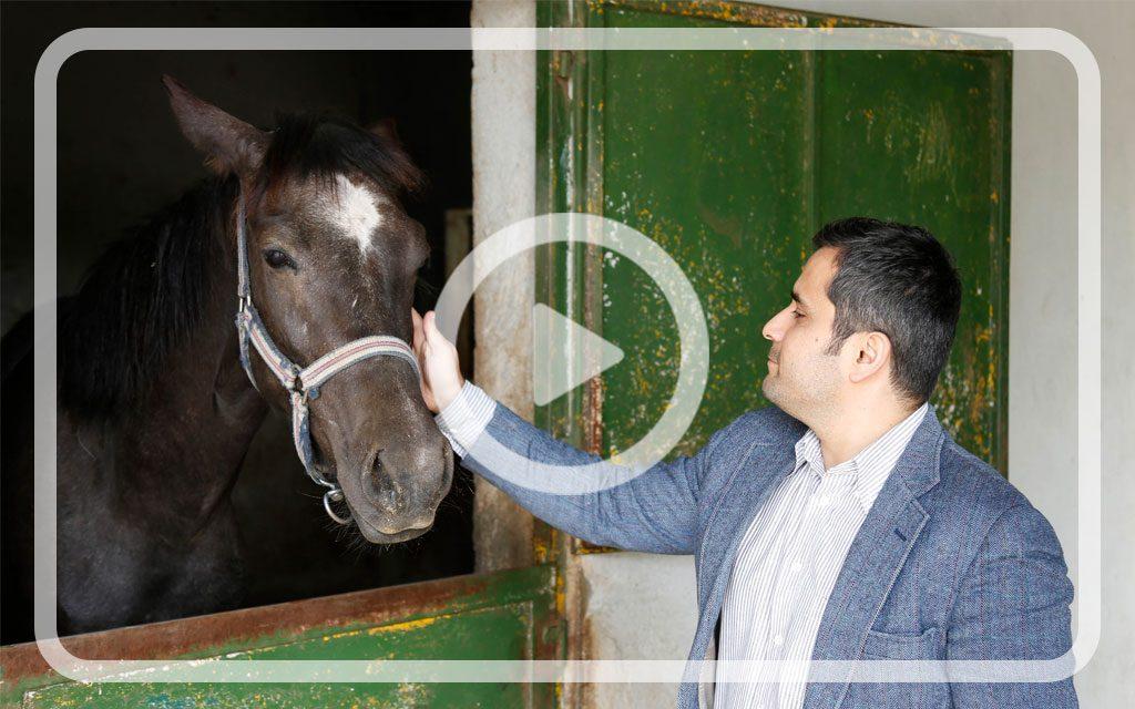 آموزش رکوردبرداری از اسب